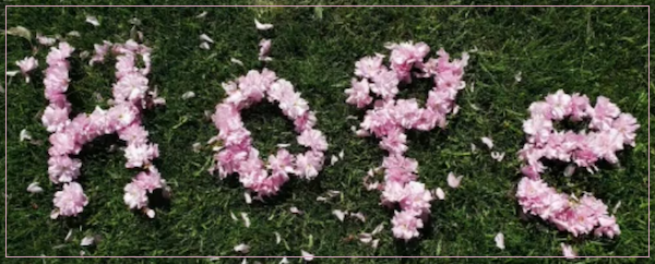 [PIC] Flower Petals Arranged On A Lawn To Spell The Word 'Hope'