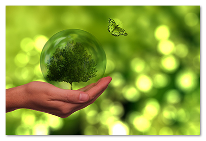 Butterfly and a hand holding tree in a globe